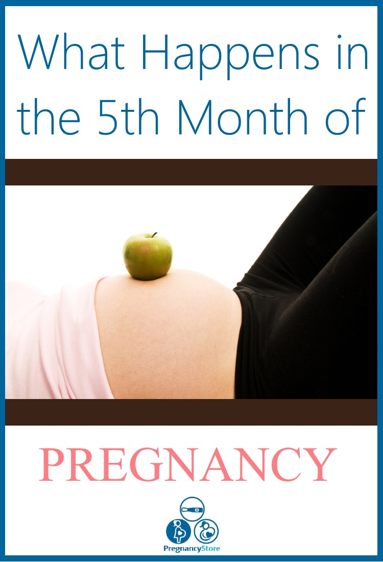 What Happens In The Fifth Month Of Pregnancy Www Early Pregnancy Tests Com
